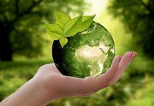 Jak być ekologicznym w 2019 roku?